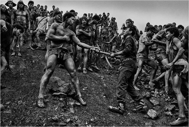 Le Sel de la terre: sur les traces du photographe Sebastião Salgado